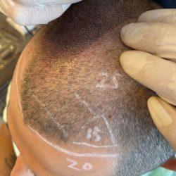 国内のヘアタトゥーについて(他のまともなところはここくらいか)